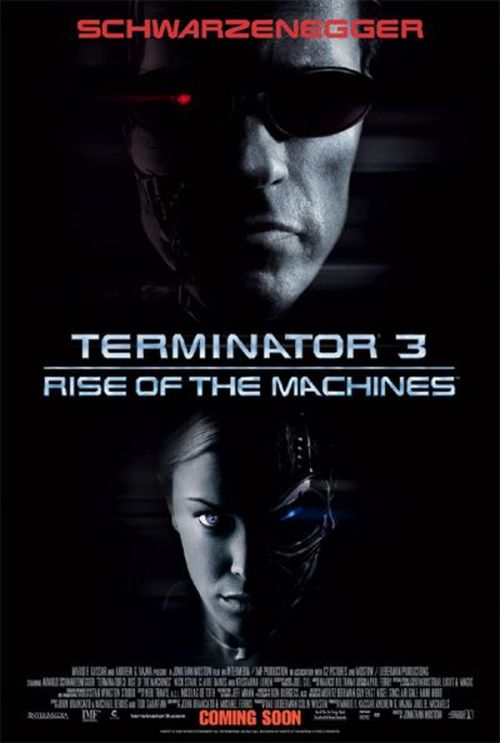 http://www.cinehorizons.net/sites/default/files/affiches/Terminator_3_bigaffiche2.jpg