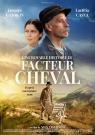 L'Incroyable histoire du Facteur nommé Cheval - Affiche