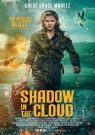 Shadow in the Cloud - Affiche