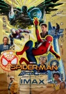 Spider-Man : Homecoming - Affiche