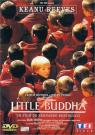 Little Buddha - Affiche