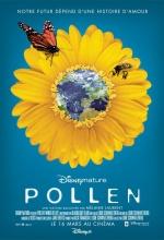 Pollen - Affiche