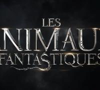 Les Animaux fantastiques- Photo