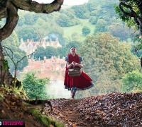 Into the Woods-Promenons-nous dans les bois- Photo